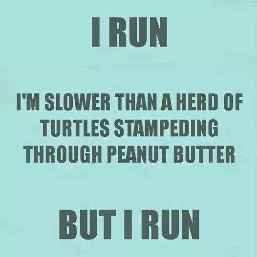 Turtle in Peanut Butter